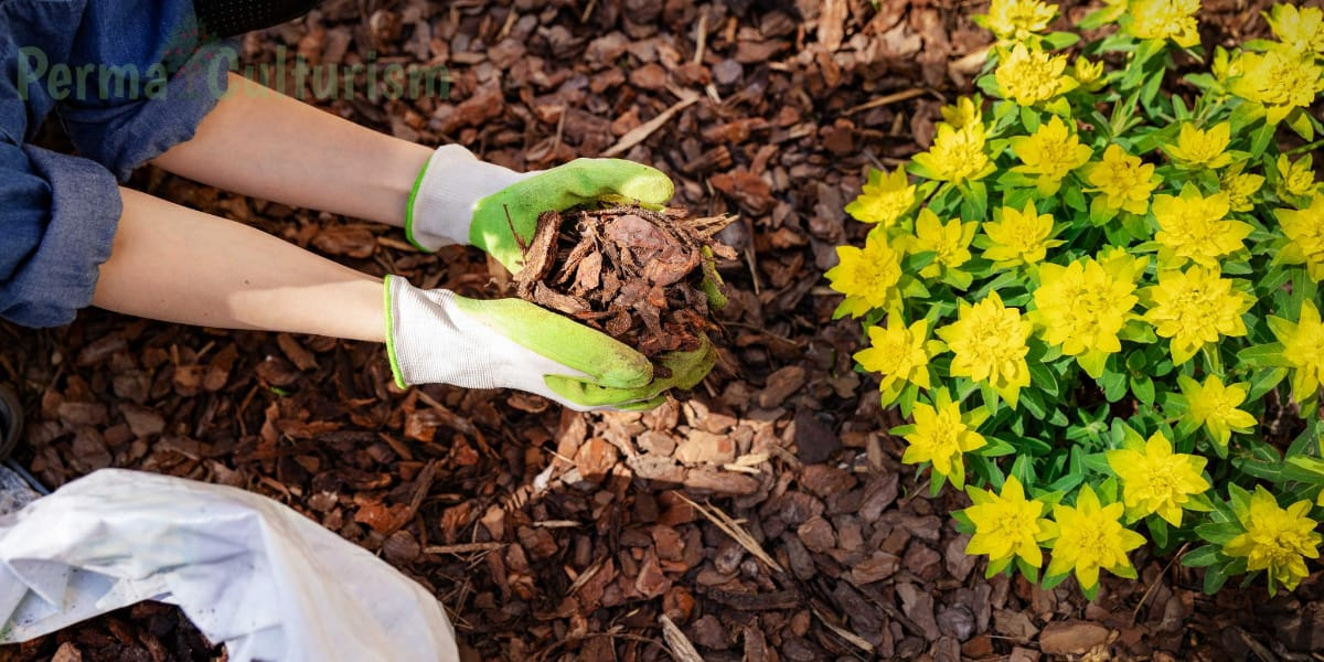 benefits of wood chips mulching